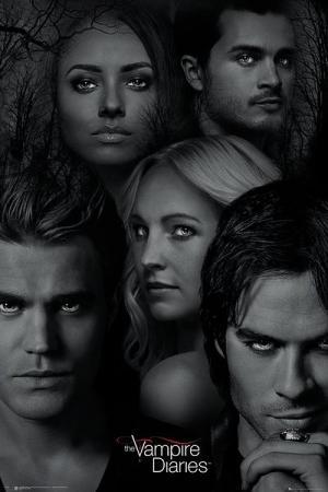 Przez długi czas był on chłopakiem Eleny, która jednak zakochała się w jego bracie, Damonie.