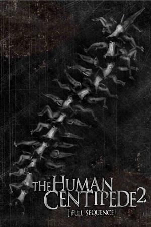 Filmy z seksu ludzkiego